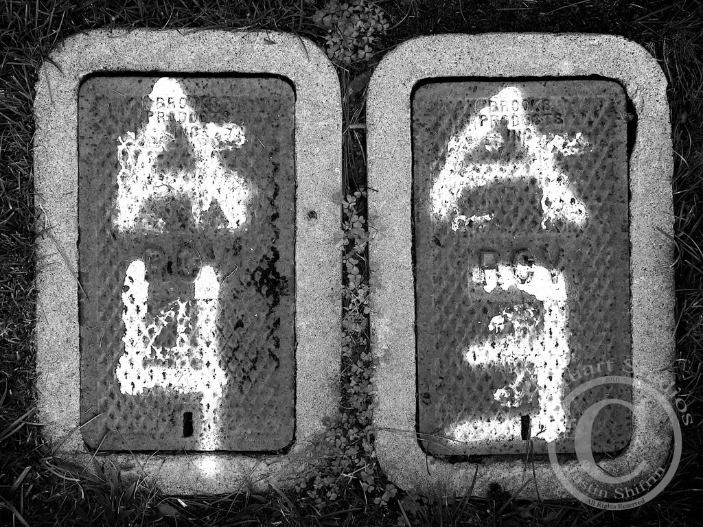A4 A3 (Canon S90)<br /> <br /> Gritty black and white images are becoming more pleasing to me.  I still love beautifully saturated compositions, but black and white photographs are enticing with their details.  Notice the creeping clovers moving their way in between the two junction boxes at the top and bottom.  <br /> <br /> The set of boxes pictured above proved to be an excellent composition highlighting the underbelly of perfection (e.g.: manicured lawns, pruned roses, and overhanging queen palm trees) in suburbia.<br /> <br /> February 25, 2010