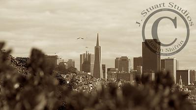 San Francisco Skyline  A view of San Francisco and the Transamerica building from Alcatraz.  Ago vita vos somnium (live the life you dream)