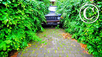Out on the Range  While on my way to the Carlsburg Brewery in Copenhagen, Denmark I found this Range Rover that was overtaken by the overgrowth lining this driveway.  Such instances of vehicles becoming part of their surroundings are so interesting!  If you have any photographs or tips where to find scenes similar to this, please share!  Ago vita vos somnium (live the life you dream)