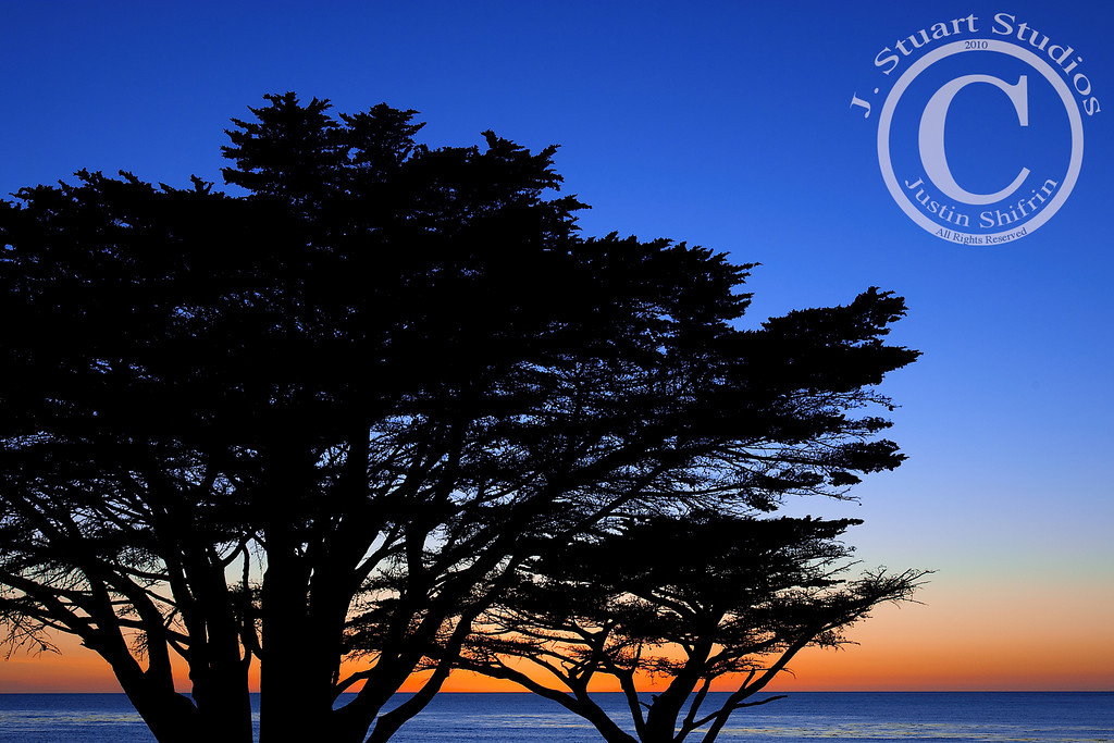 "Cypress Sunset  My wife and I had the great opportunity to take a jaunt up to Pebble Beach and Carmel, California last year.  We hiked around Big Sur, visited the Carmel village, went to Cannery Row and toured the excellent Monterey Bay Aquarium.  This image, taken in a hurried frenzy as the sun set, out of all the lovely sites, exemplifies this trip.  The soothing salty winds and calming waves are nearly transmitted through this image for me.    I arrived at the Carmel Beach City Park at 5:35pm, just as the sun was setting.  By the time I traversed the sand dunes the sun had set.  However, at 5:37pm I exposed this image while hand-holding a ND to stop the sky down a little and help properly expose the sea.  The windswept cypress trees along the Carmel coast are most interesting with their squat stance.  Here in San Diego the Torrey Pines are very similar to the cypress trees of Carmel.  If you are in San Diego and want an excellent hike that covers the beach and hilly terrain, head over to the <a href=""http://www.parks.ca.gov/?page_id=657""> Torrey Pines State Natural Reserve</a> south of Del Mar and north of La Jolla.  Your efforts will be rewarded by the fantastic ocean views from atop the bluffs.  May 16, 2010"