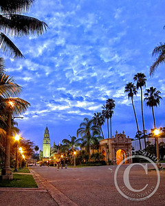Lit Palm Path (Pseudo HDR)  After experimenting with my new (at the time) Canon S90 in Balboa Park I used software to bring out many details otherwise lost on the viewer.  This pseudo HDR (high dynamic range) image uses incredibly boosted contrast, a touch of white balance, sharpening and shadow adjustment.  In all, the effect is as intended, unrealistic, for a point-and-shoot that is!  Enjoy.  Ago vita vos somnium (live the life you dream)