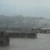 Nasty days--rain, wind, cold