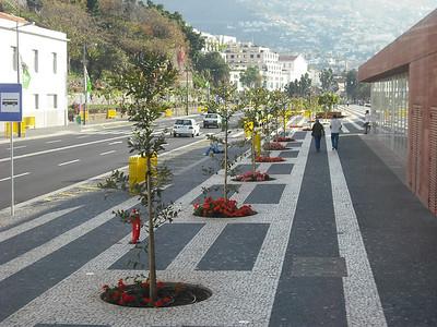 Pictures taken on a bus tour of Tenerife, Santa Cruz, on April 25.
