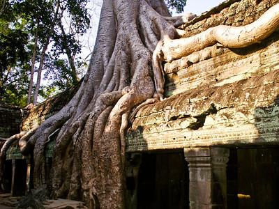 2006_Cambodia