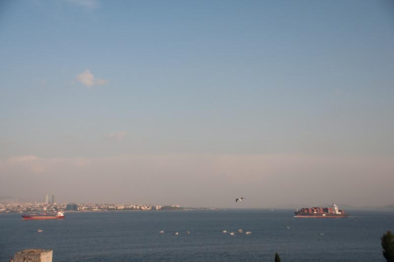 More Sea of Marmara traffic.