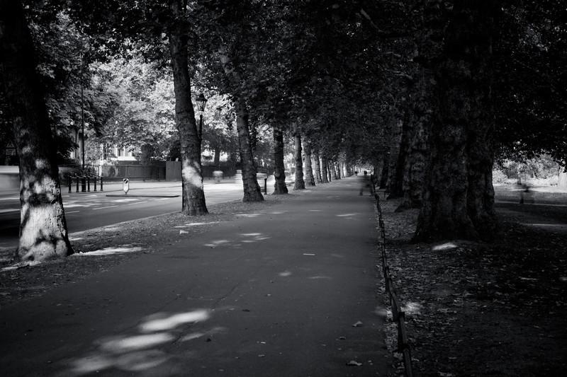 King James Park