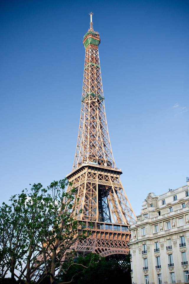 The Eiffel Tower in the evening