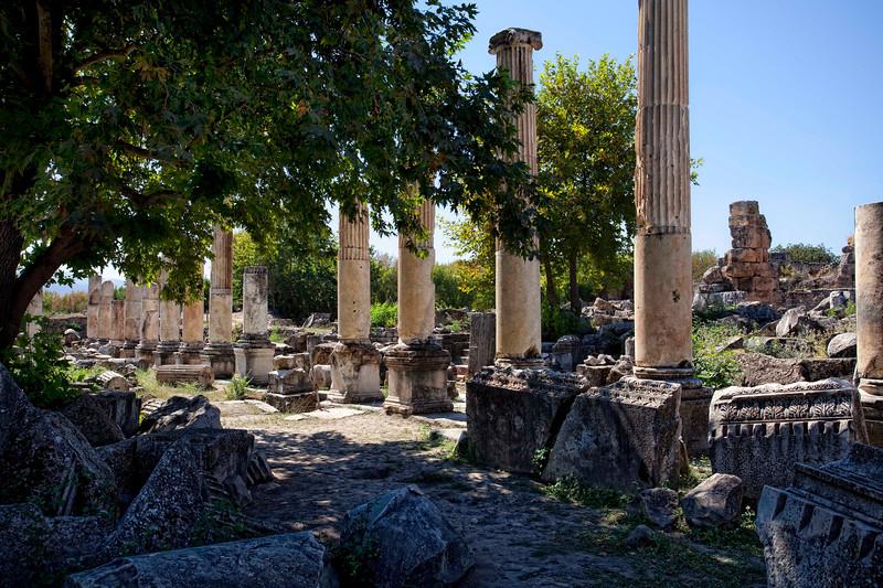 Afrodisias 20100919_6002.jpg