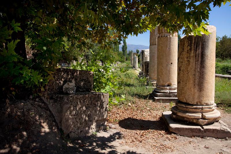 Afrodisias 20100919_6000.jpg