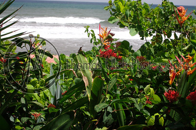 A view of the beach from the restaurant at Hotel Tekuani Kal in playa El Tunco.  La Libertad, EL Salvador.