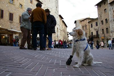 My Piazza... San Giminiano - Toscana