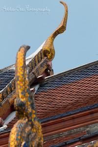 A bird entering its nest at Wat Arun