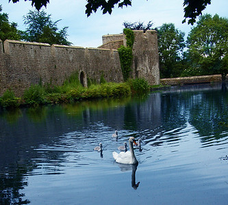 Bishops moat, Wells, England