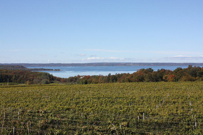 One of many wineries-- toward Charlevois