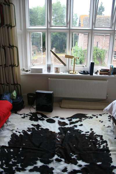 The cow-skin rug in Andy's room.  Nice.