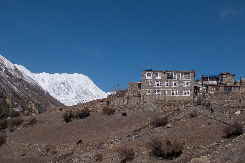 Entering Khangsar Village