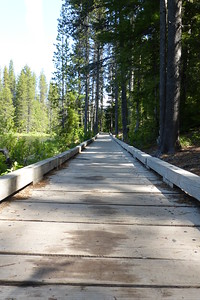 Parts of the trail around the lake were boardwalk.