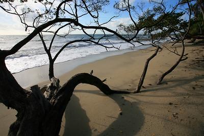 Trinidad 2010