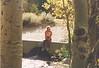 Rush Creek, June Lake Loop