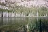 Sotcher Lake, Reds Meadow