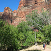 Near the Weeping Wall; Zion