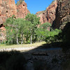 Riverside Walk; Zion