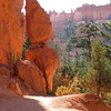 Navajo Loop Trail; Bryce Canyon