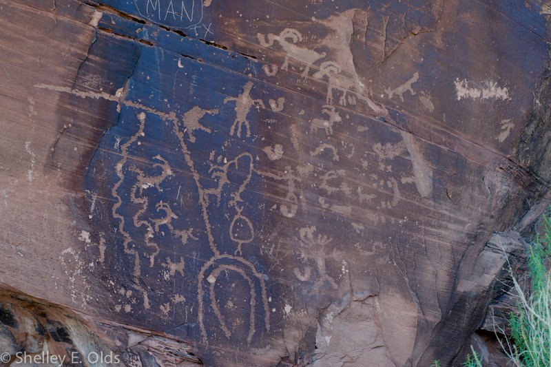 Kane creek canyon, Petroglyphs; Trip to Canyonlands and Arches National Park; Moab, UT