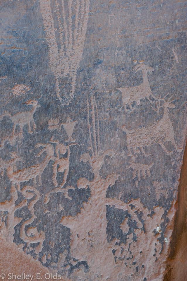 Kane creek canyon, Petroglyphs; Trip to Canyonlands and Arches National Park; Moab, UT