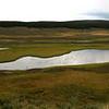 Yellowstone Panorama.