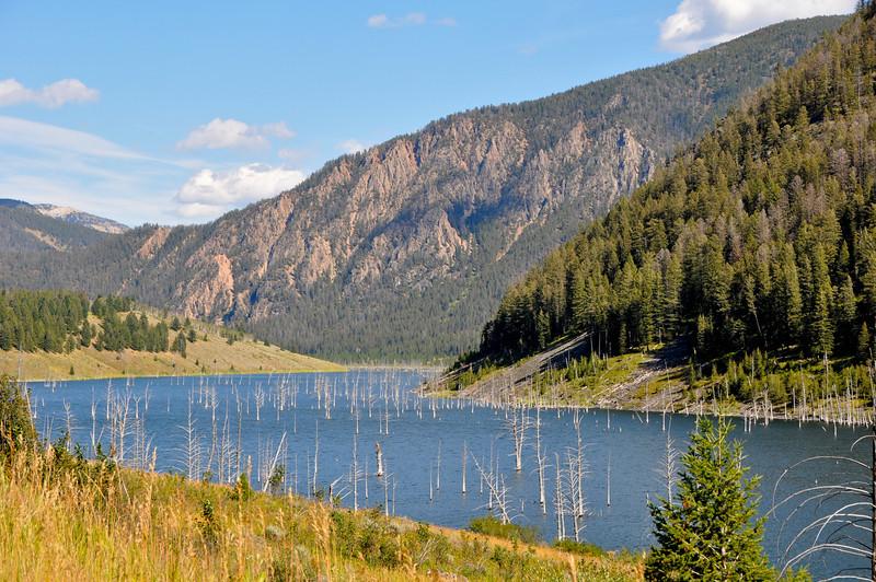 Earthquake Lake, Montana