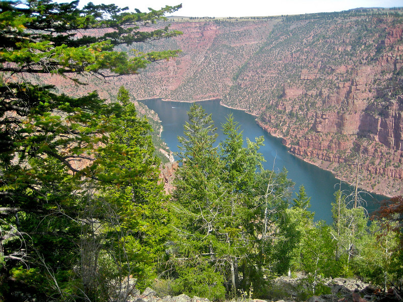 A small part of Flaming Gorge Recreation Area straddling the Utah/Wyoming border.  The boat in the water is a big one.