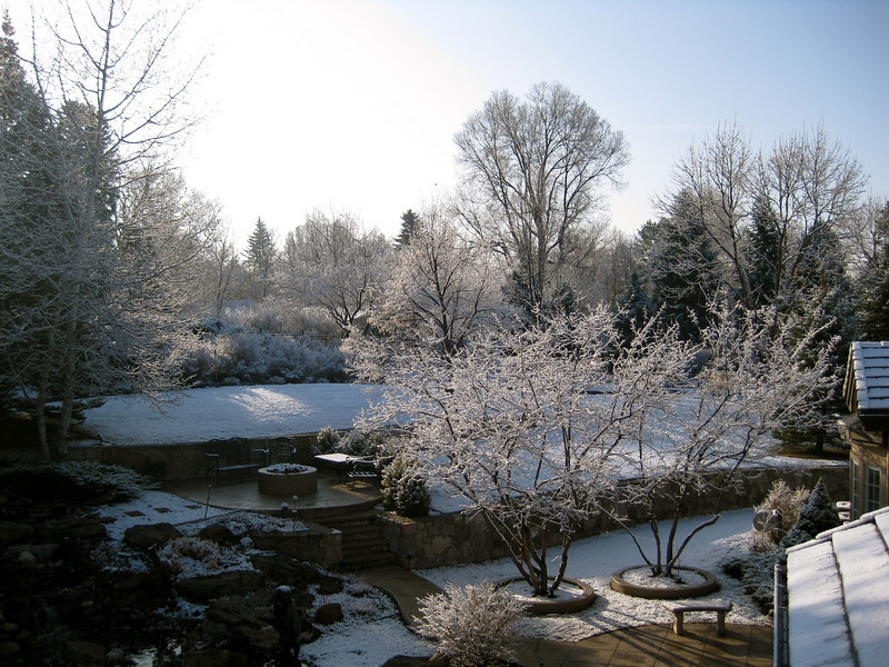 views of Aunt Gail & Uncle George's backyard on Friday morning--surprise overnight snow that melted by noon.