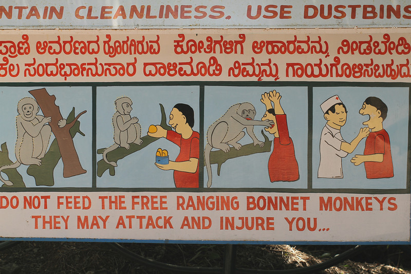 Danger Sign - The free-ranging bonnet monkeys may attack you!
