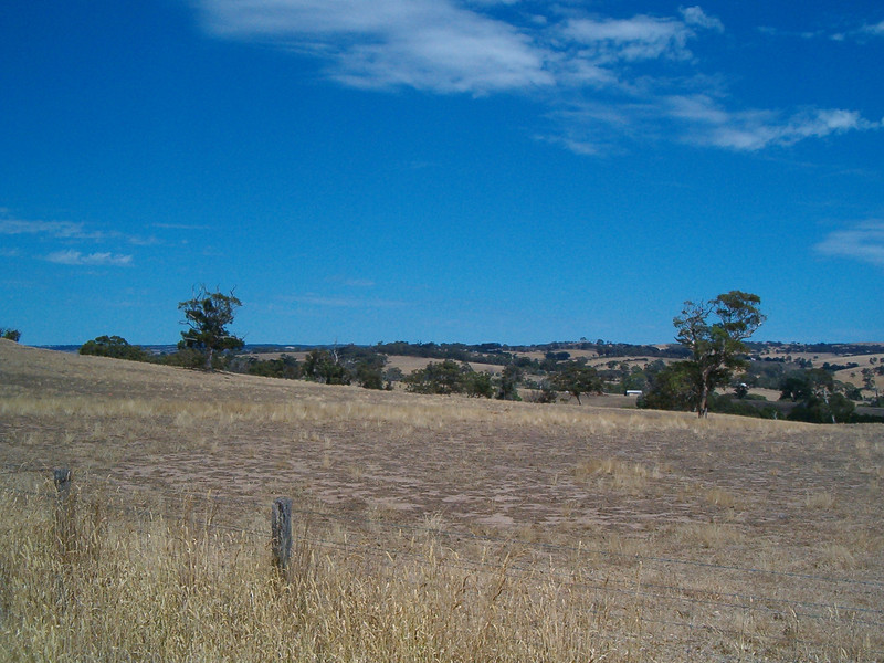 Top of the Woodlands Ranges looking towards Prospect Hill