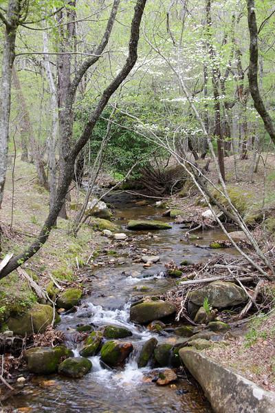 Widow's Creek. Stone Mt SP, NC.