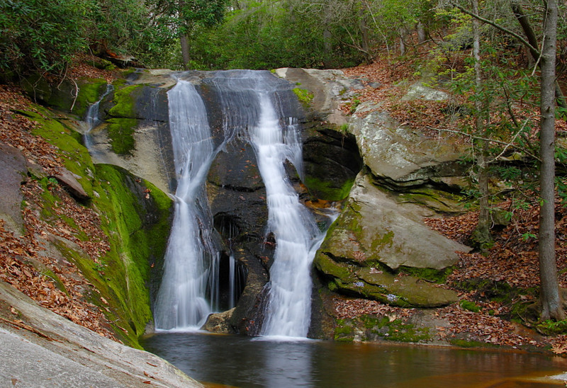 Widow's Creek Falls. Stone Mt SP, NC.