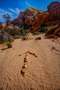 Red Rock Canyon National Conservation Area, Las Vegas, NV