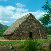 Tobacco drying house