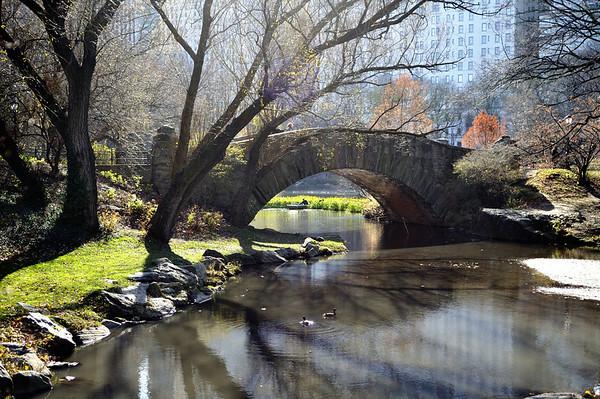 New_York_20091204_139