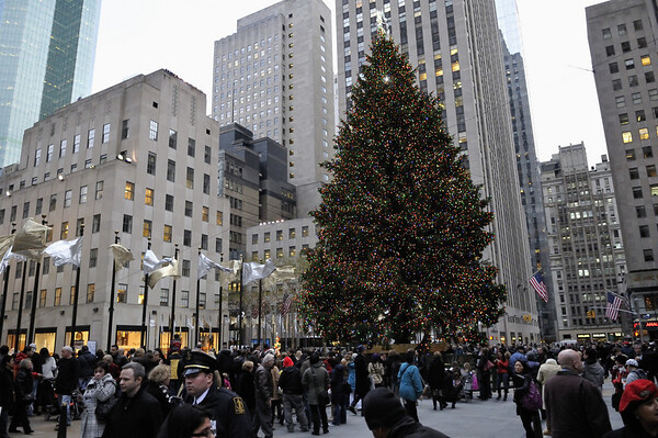 New_York_20091204_353