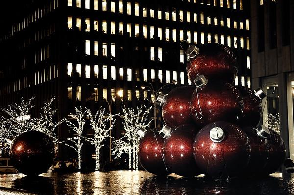 New_York_20091202_011