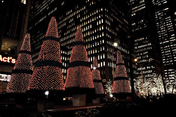 New_York_20091202_018