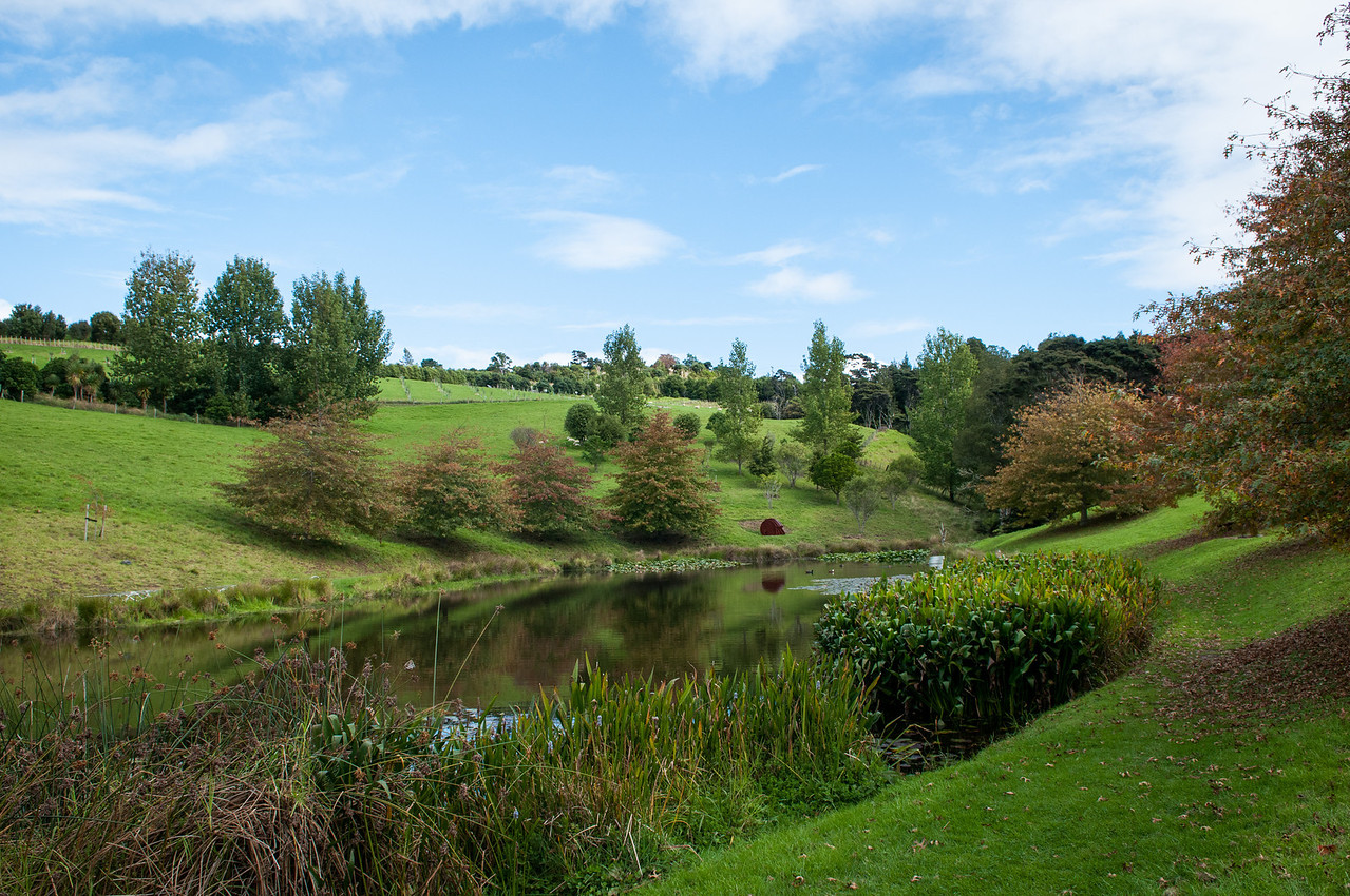 Auckland-20120501-413