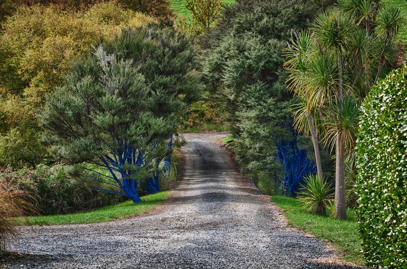 Auckland-20120501-422