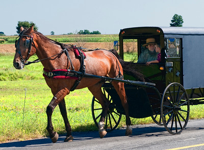 AmishCountry16