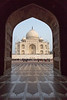 On the left (western) side of the Taj Mahal is a mosque where there are 569 prayer rugs in black marble.