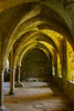 Inside the dormitory building - the light through the tree outside was beautiful. This is the only building left at Battle Abbey. Beautiful arches.