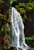 """Trafalgar Falls""  Dominica is a country of 365 rivers, one for every day of the year and breathtaking waterfalls.  Trafalgar Falls is one of the best of the best on this nature island."