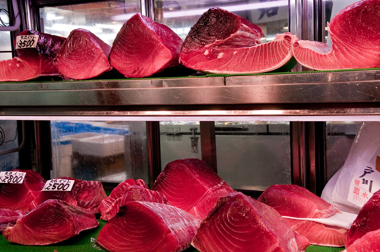 Tsujiki Fish Market-3